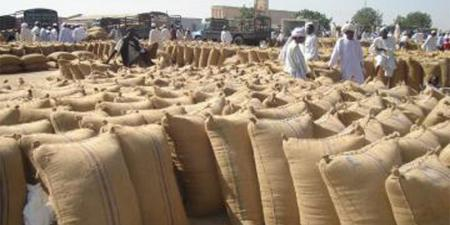اخبار السودان اليوم  الأحد 24/5/2020 - تسليم مزارعي الجزيرة القمح للبنك الزراعي رغم ضعف سعر التركيز